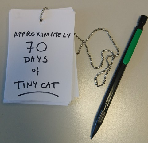 Tinycat Front Cover